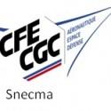 Logo Snecma AED
